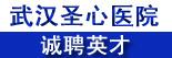 武汉圣心医院有限公司